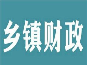 吴晓林:乡镇财政监管涉农涉村资金的探讨