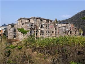 春�就能住上新房!一起�砀惺苋A埠�溪�|村村民的喜��~
