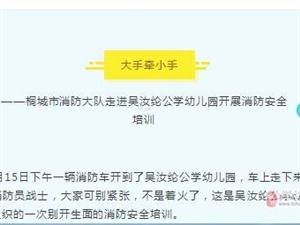 桐城市消防大�走�M�侨昃]公�W幼��@�_展消防安全培�
