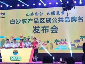 """白沙县农产品区域公共品牌""""白沙良食""""全网发布"""