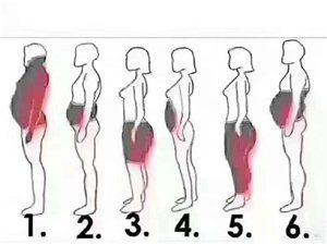 来看看 你的胖 到底是哪里出现了问题呢