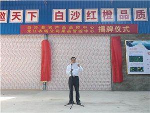 白沙县农产品品控中心、龙江农场公司果品管控中心揭牌成立