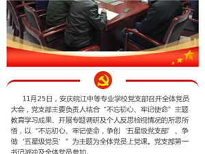 安庆皖江中等专业学校党支部书记上主题教育专题党课