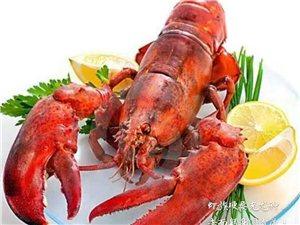 七绝――龙虾