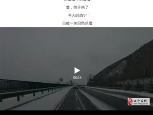 快看!今天的雪景刷爆了青海人朋友圈