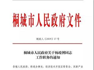 桐城市人民政府关于杨竣博同志工作职务的通知