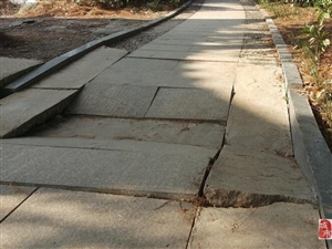 大冶:青龙堤健身步道破损严重