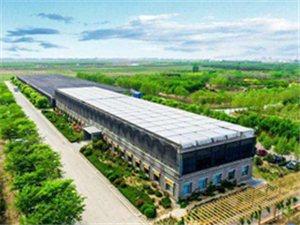 滨州市首个!博兴县基本实现农业现代化