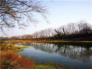 静静地白露河畔