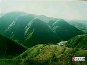 甘肃省天水市张家川县卧龙山中老庵寺