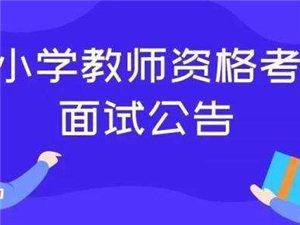 安徽2019年下半年教资面试12月10日开始网上报名