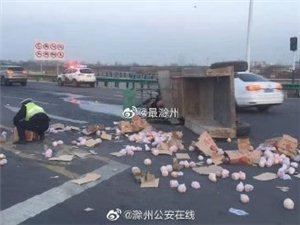 车祸导致一百多箱苹果洒一地 辅警号召群众一起帮忙捡苹果