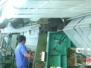大隐隐于高州市!这间公司致力成为中国最大绒布生产商
