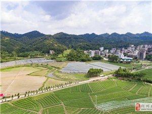 化州合江这条村出名了!上榜全国乡村治理示范村