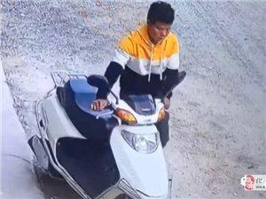 化州男子在�b江京界明目���偷走一部摩托�!�l�J�R?
