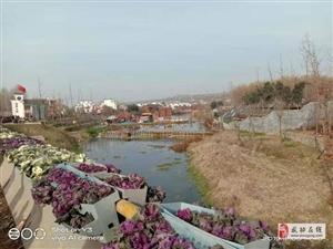 【武功故事】(家在漆水河边之一)漆水河武功段的传说