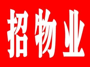 关于郧西光彩市场公开招聘物业管理公司的公告