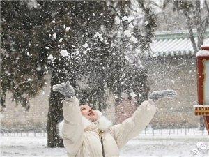 想看看你眼中的北京雪