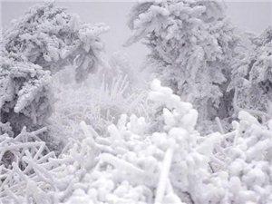��冷空�馇忠u!�西�⒂��硇乱惠�雨雪天��