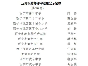 ?青海省2019年度中小�W教��系列正高�教���u���Y果公示