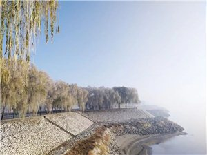 """初冬的黄河岸边美翻了!""""银花""""绽放,雾凇绝美!"""