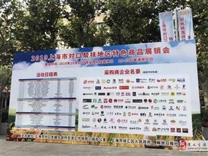 """""""小刺梨""""挺进""""大上海""""——贵州刺梨产品成功开拓上海市场纪实"""