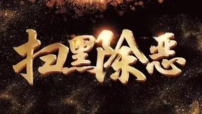 临泉两起恶势力犯罪集团被提起公诉!诈骗、强迫交易、非法采矿......