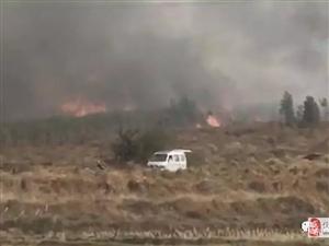 突发!化州杨梅多亩甘蔗地发生火灾,现场火势吓人!