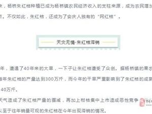 """情暖宜城 �坌闹��r丨碧桂�@安�c片�^公益�头���N""""�W�t桔"""""""