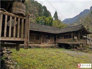 """咸丰城郊发现最典型最完整的""""撮箕口""""吊脚楼"""