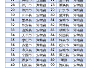 桐城上榜2019中��中部百���h
