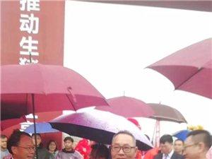 """祖籍来自化州杨梅的""""吴川首富陈华""""投资30亿元回家乡养猪...."""