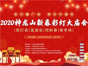 彩灯耀广安・欢乐中国年――2020广安神龙山新春彩灯大庙会