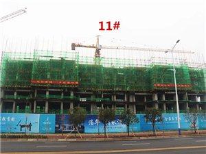 潢川清水湾二期1月份施工进度报道,内附价格、面积、优惠详情!