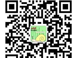 2020年广东茂名化州市卫健系统事业单位招聘速看!
