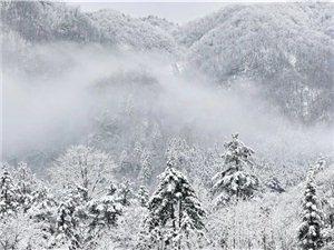 2020年金寨第一场雪