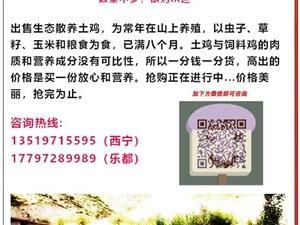 散�B土�u特�r出售,�系�峋�13519715595