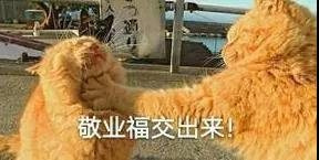 集福,集�M未�淼拿篮谩�