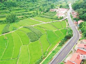 湖北农村公路向户延伸,高铁、机场全面开建