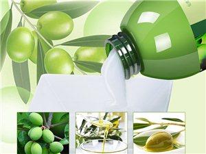 仙维娜柔顺护发素橄榄丝滑营养护发素500g 烫染修