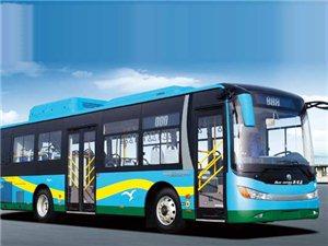 齐河城区公交春节假期免费乘车啦!
