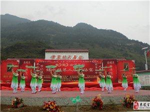 绿水镇老寨村举行第二届盛大刨汤节活动