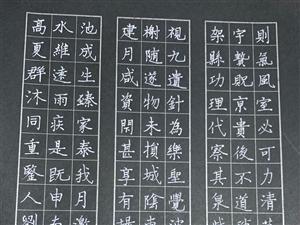 潢川县硬笔书法家协会副主席刘书鸿春节硬书新作