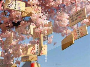 今日立春――风雨过后便是春暖花开