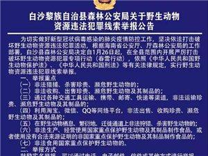 有奖举报!白沙县森林公安局关于野生动物资源违法犯罪线索举报公告