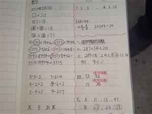 停课不停学  自主更高效――枝江市团结路小学抓实线上教学