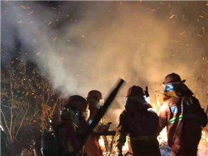 昨晚化州一山头突发山火,消防官兵神速扑灭!