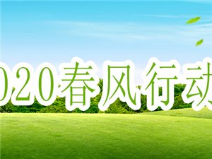 """望江2020年""""春风行动""""招聘会火爆开场"""