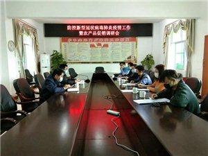 王志铮副县长带领电商一行到元门乡指导农产品促销工作