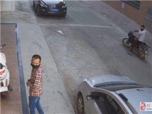 化州这贼仔居然在光天化日之下直接抬走摩托车,猖狂之极!